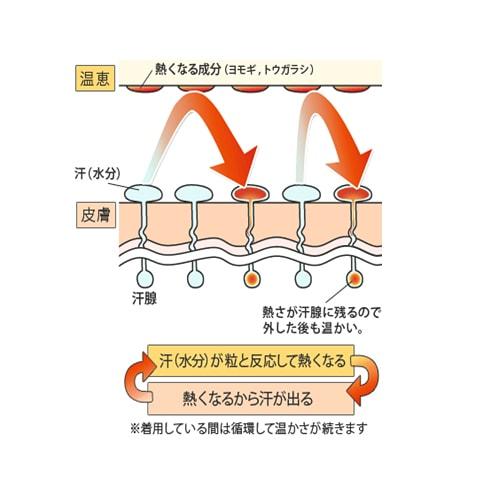 シルク もぐさサポーター  「温恵」  ひざ用 2枚組  日本製